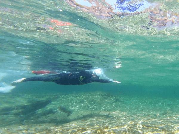 Stage Terra i Mar 07 - Jorge Guzmán Natación Aguas Abiertas en el mar para adultos