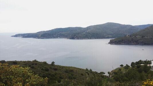 stage terra i mar esport i natura costa brava natación en aguas abiertas en el mar jorge guzmán